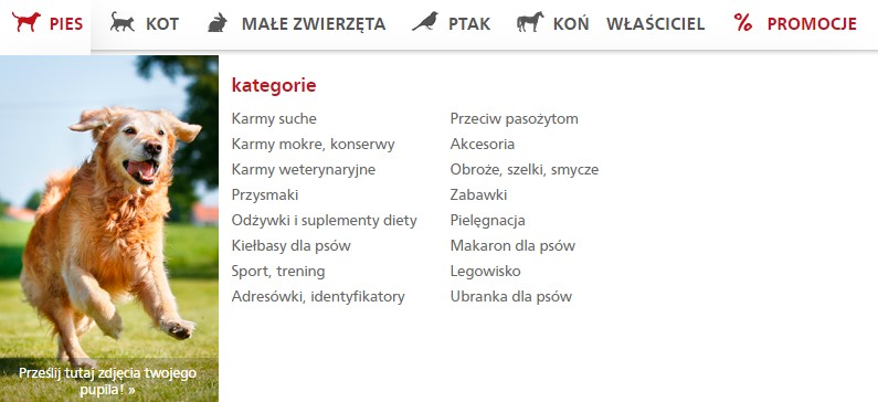Kategorie