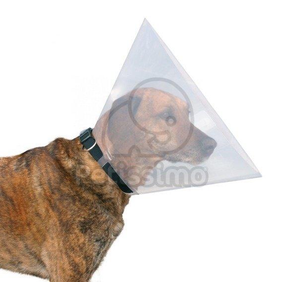 kutya gallér ár