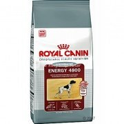 Royal Canin Energy 4800 2 x 15 kg