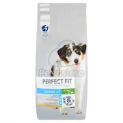 Perfect Fit Junior -1 Medium & Large suha hrana za pse 14,5 kg